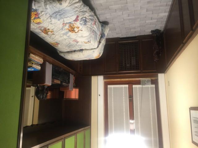 affitto privati milano foto1-102101385