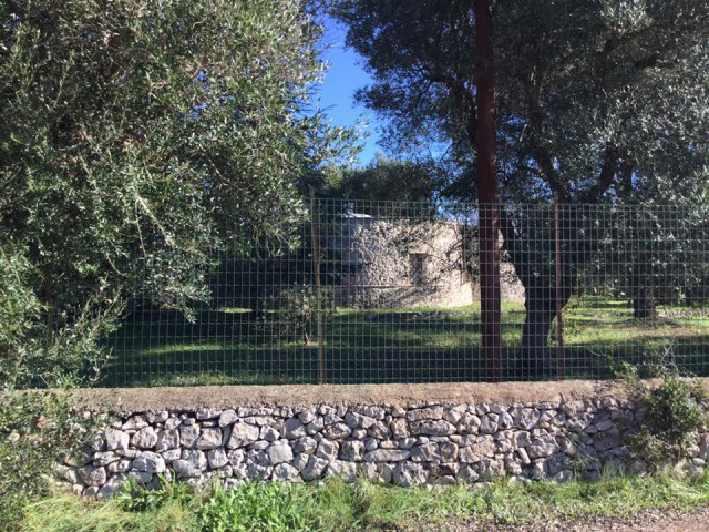 Vacanza in Baita Chalet Trullo ad Ostuni piazzetta s. oronzo 20