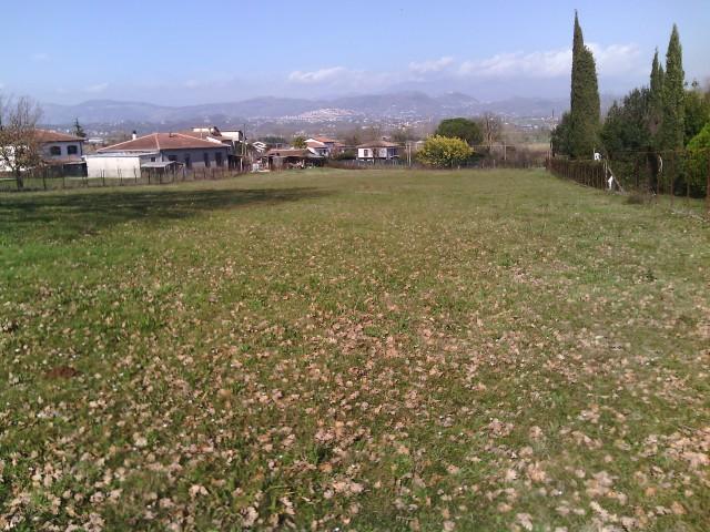 Terreno Industriale in Vendita a Supino