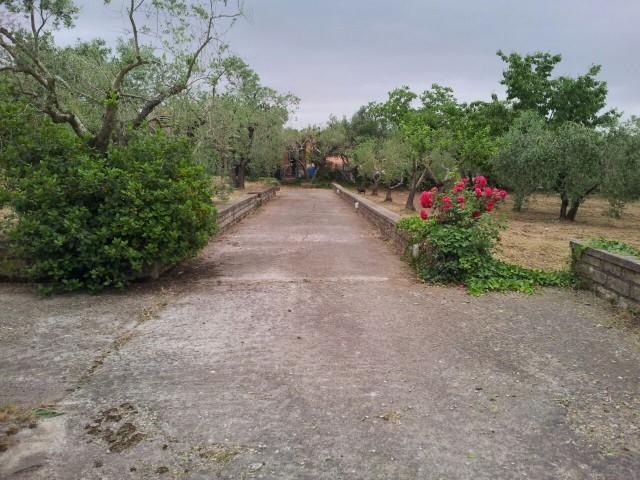 Terreno in Vendita a Frascati via di Spinoretico Vermicino Tuscolana