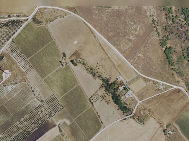 Terreno Agricolo in Vendita a Sambuca di Sicilia