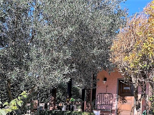 Villa in Vendita a Campagnano di Roma via Antonio Gramsci Zona Residenziale