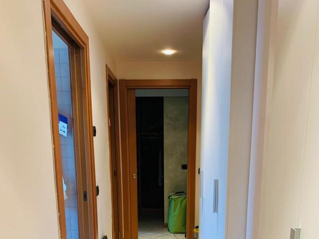 Appartamento in Affitto a Milano via Brioschi Bocconi Meda