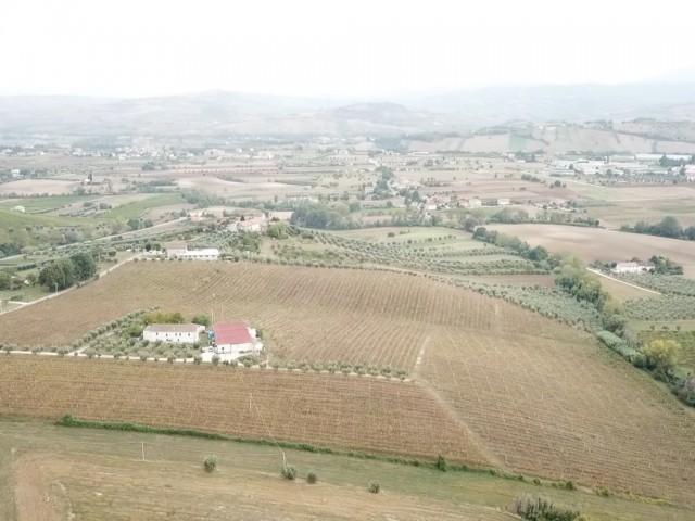 Azienda Agricola in Vendita ad Ancarano Contrada Casette