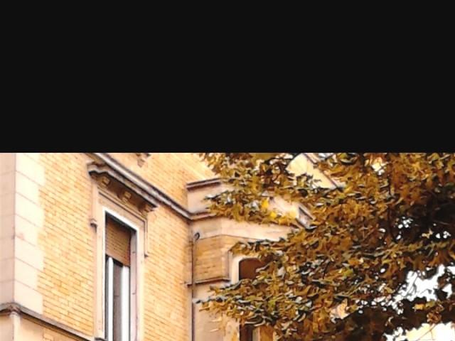 Posto Letto in Affitto a Parma Viale Toschi n 13 Centro