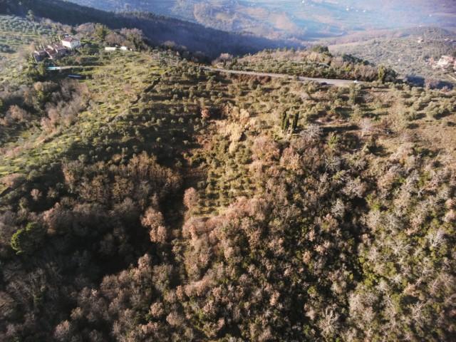 Terreno in Vendita a Montevarchi via di Moncioni Frazione