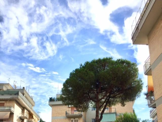 Appartamento in Affitto a Roma Largo Domenico Donzelli 6 Battistini