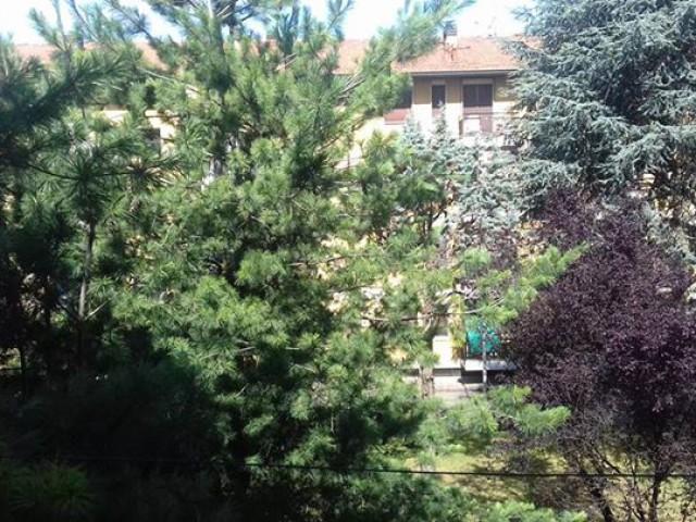 appartamento in vendita cassano d adda via leonardo 38 foto1-78755836