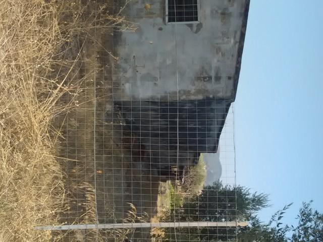 terreno agricolo in vendita a montescaglioso via fratelli menzano 01 foto1-80292016