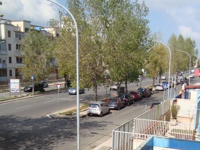 appartamento palermo zona via oreto nuova foto1-80431766