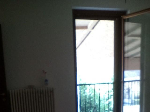 camere in affitto alessandria foto1-81799863