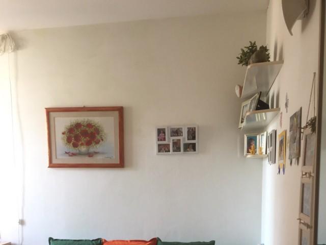 monolocale in affitto parma foto1-92327039
