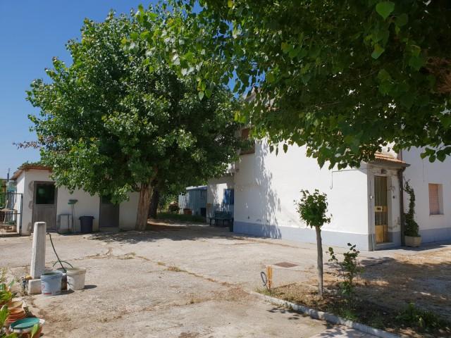 villa bifamiliare in vendita a montemarciano via porcareccia 12 foto3-93547610