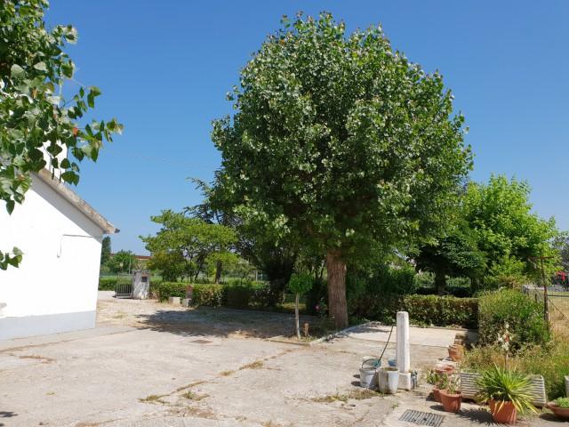 villa bifamiliare in vendita a montemarciano via porcareccia 12 foto4-93547610