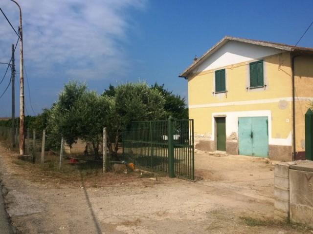 terreno agricolo in vendita a cassano jonio contrada lattughelle foto1-94497672