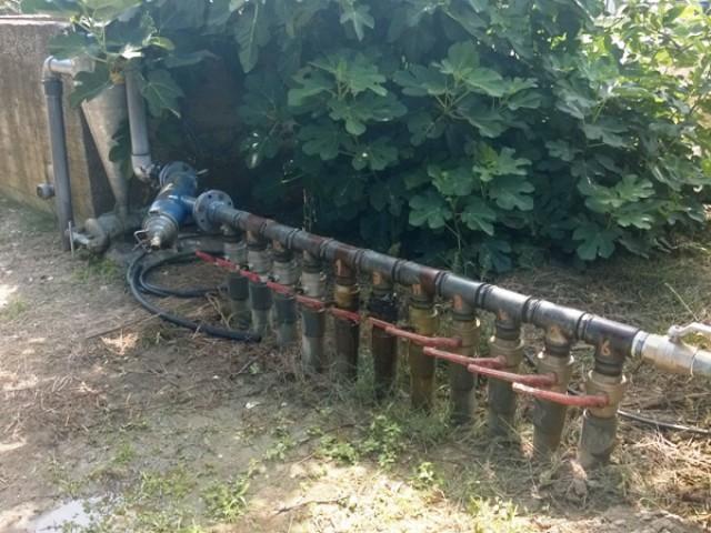 terreno agricolo in vendita a cassano jonio contrada lattughelle foto4-94497672