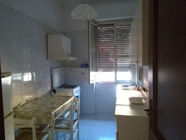 affitto privati roma foto1-98627591